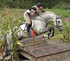 thumb_horsesports